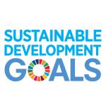 E_SDG_logo_No UN Emblem_square_rgb 1